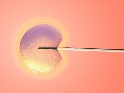 fertilitetsbehandling