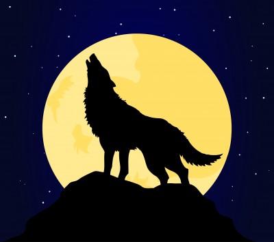Overlev ulvetimen